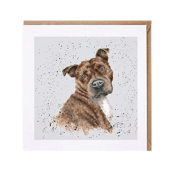DR010 Wrendale Designs Scrumpy Staffordshire Bull Terrier Greetings Card