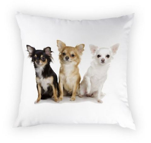 Image of Chihuahua Puppy Dog Cushion Covers