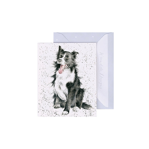 Image of Wrendale Designs 'Shadow' Collie Dog Mini Greetings Card