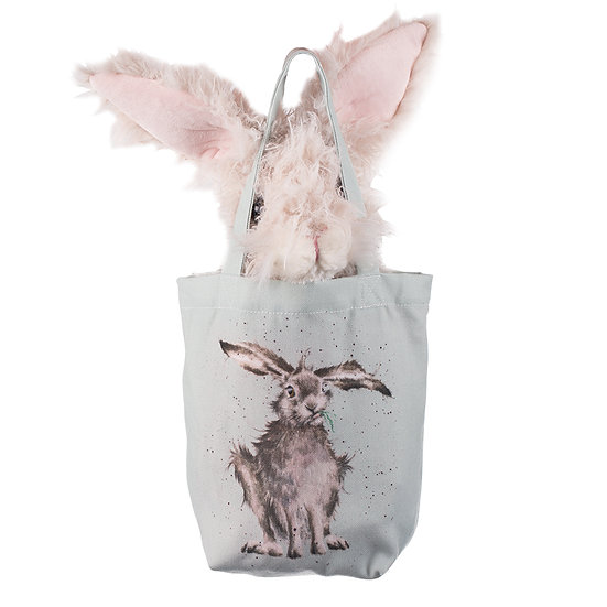 Image of Rowan the Hare in his bag