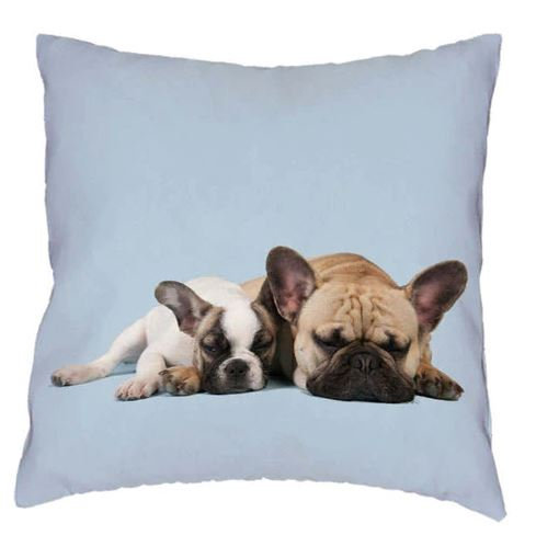 French Bull Dogs Cushion Cover