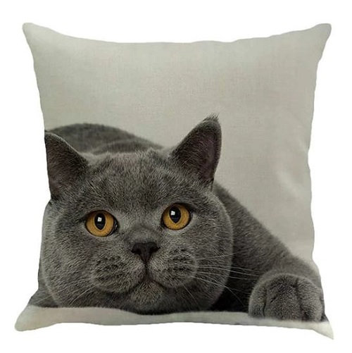Grey Cat Cushion Cover