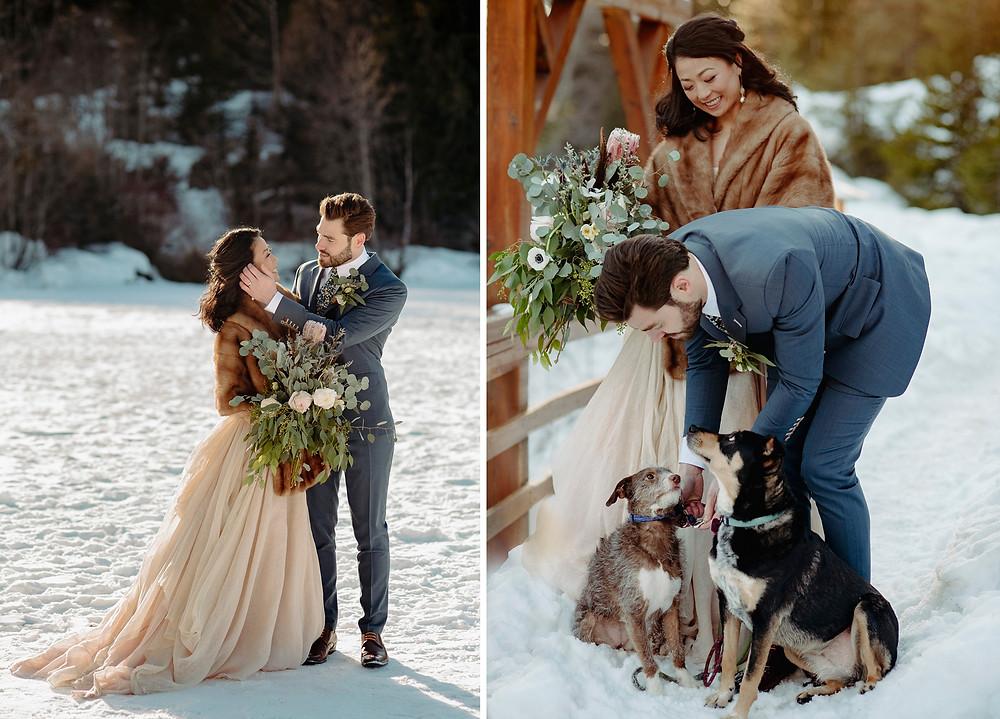 whistler winter wedding bride groom photos with pets