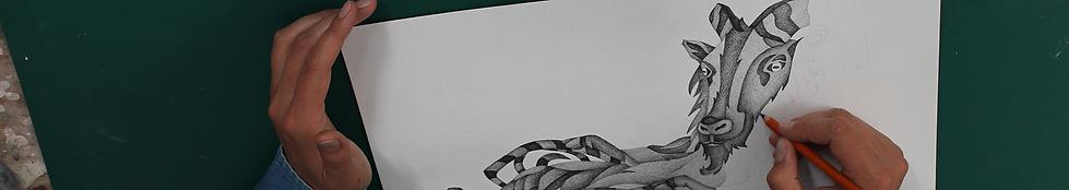 tess-sheerin-art-drawing-new-zealand.png