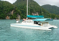46ft catamaran-2.jpg