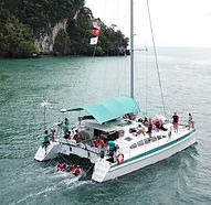 50ft cat-private cruise_02.jpg