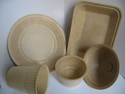 Biodegradable-Food-Packaging-and-Caterin