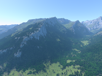 Rendering dense and distant forests with ray-casting
