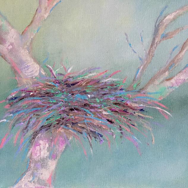 Pink Birds Nest