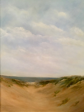 Dune to the Beach