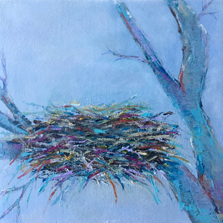 Blue Birds Nest