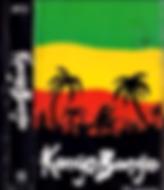TAPA KONGO BONGO.png