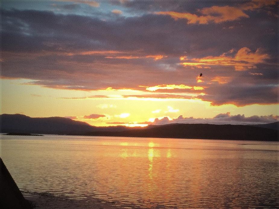 Sunset and Midge-net