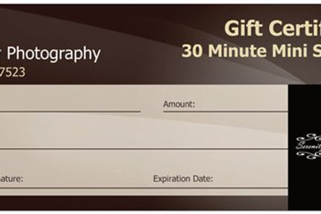 Gift Card for Mini Session