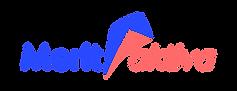 Merit_aktiva_logo.png