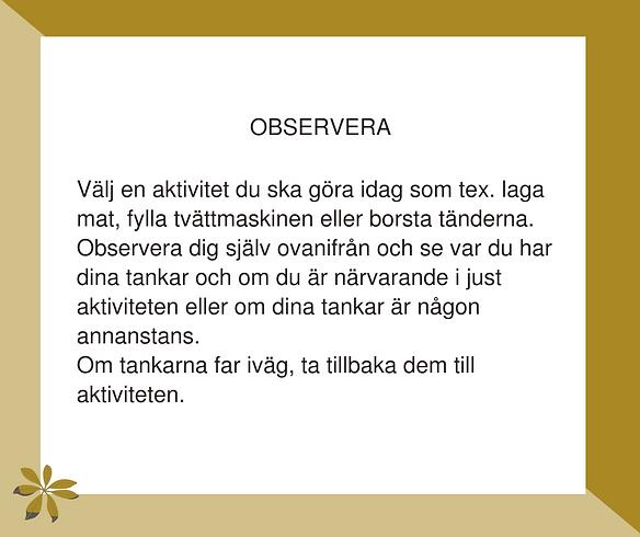 22. Observera.png