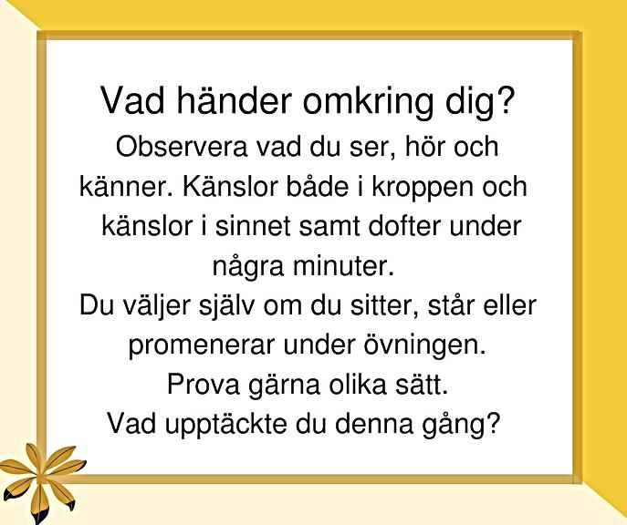 ÖVNING 18, 39, VAD HÄNDER OMKRING DIG?.p