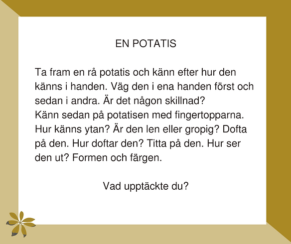 39. En potatis.png