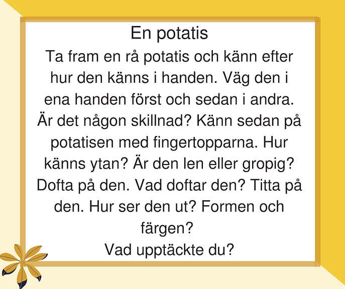 Övning 39, En. potatis.png