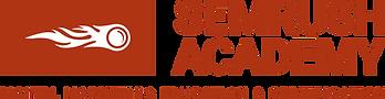 semrush-academy-logo-large_orig.png