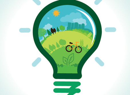Energy Companies Obligation (ECO)