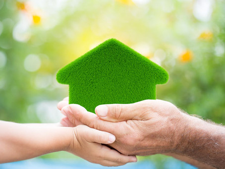 Why choose a DIY green home kit?