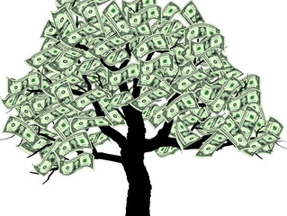 The Money Tree-Can You Afford Your Space?