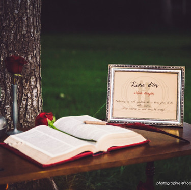 Wedding theme Adams Family -  livre d'or mariage original