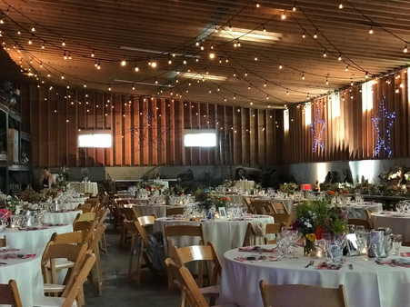 Barn Wedding - The New Shackletons - Lad