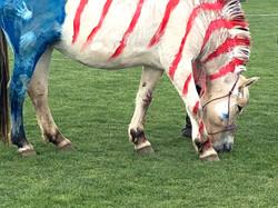 Celebration of the Horse