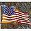 Thumbnail: American - Print