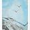 Thumbnail: Firebirds - Print