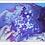 Thumbnail: Unicorns of the Sea - Print