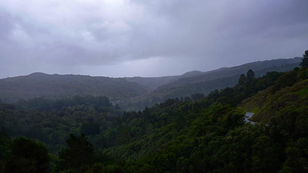 Muir-woods-conservation
