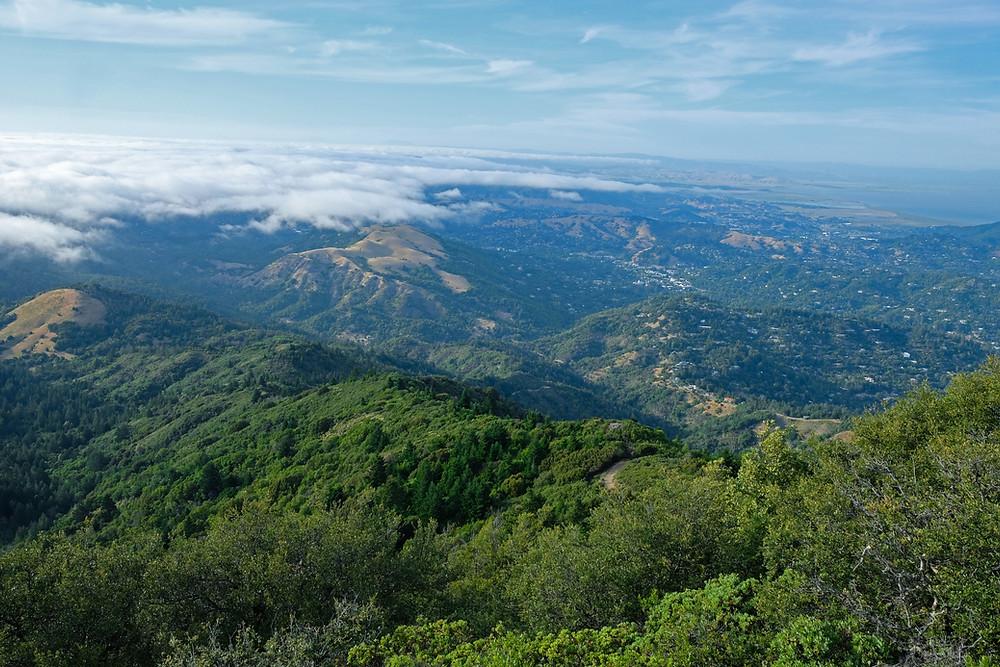 view-Mount-Tamalpais-california