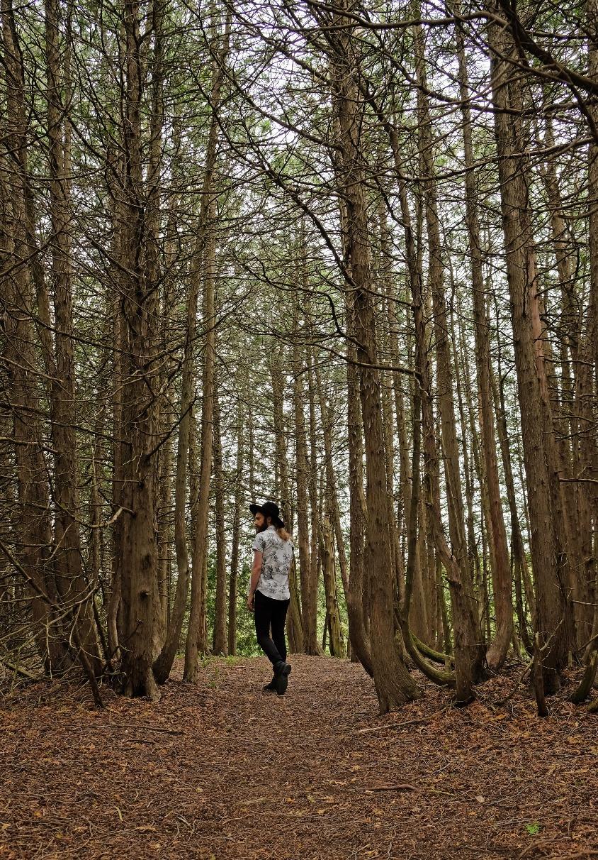 hiking-elora-ontario