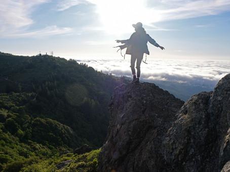 Foreboding Joy & Mount Tamalpais