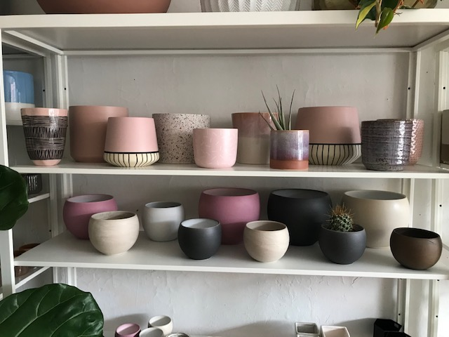 best-plant-pot-stores-in-toronto