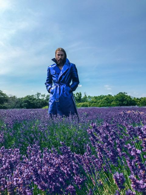 lavender-fields-prince-edward-county