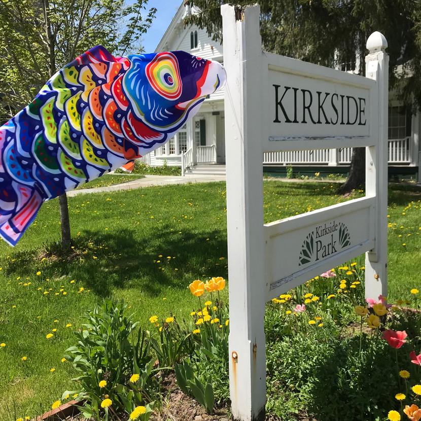 fish kites1.jpg