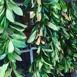 magnolia garland