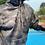 Thumbnail: Udeesa Camo Mesh Hoodie