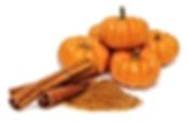 Pumpkin-Spice facial.png