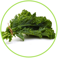 kale-1.png