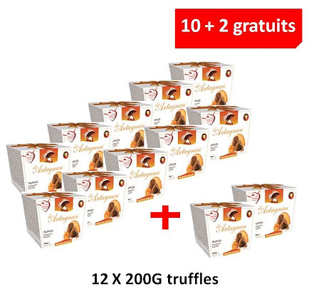 10+2 FOR FREE PROMOTION - TRUFFLES ORANGE