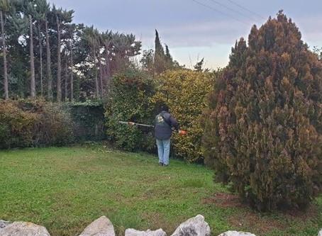 À Votre Service : la société de services à domicile sur Salon-de-Provence dans les Bouches-du-Rhône