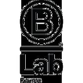 B LAB FRANCE.png