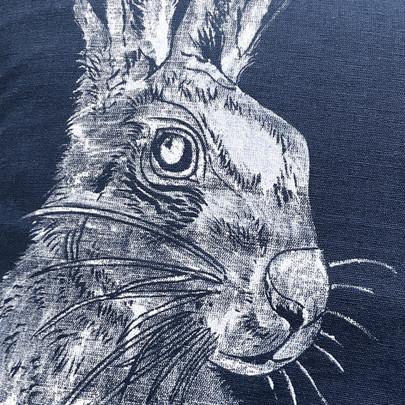 Mr Hare