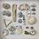Thumbnail: 'Seaview Beach Treasures' Coastal Frame