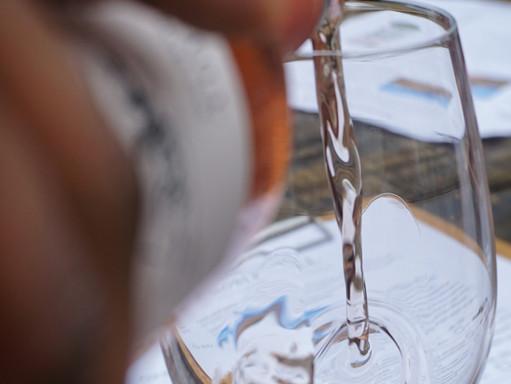 Rossmoor Pickleball Club Wine Tasting